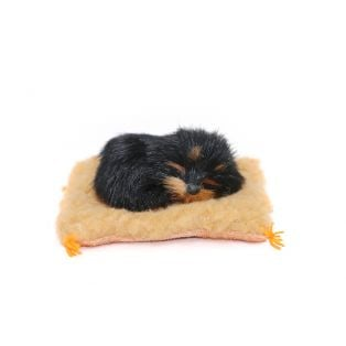 Small Dog On A Blanket 8cm Style 4